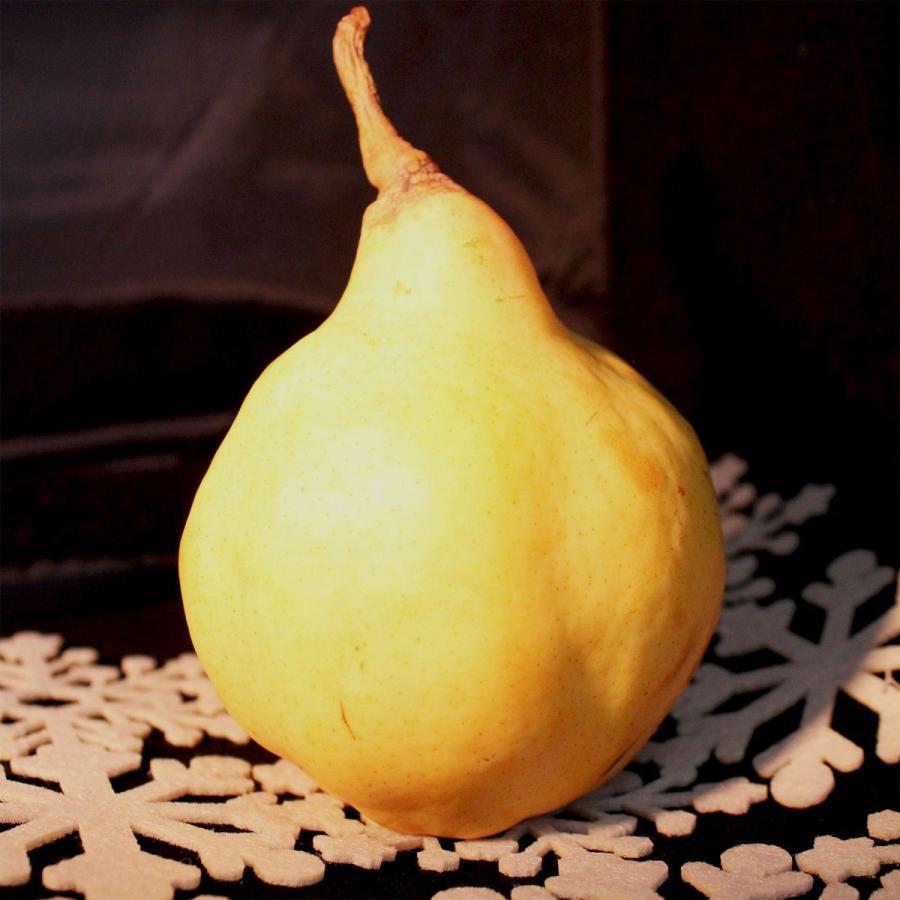 洋なし ル レクチエ 5〜7玉・約2kg 化粧箱  新潟県産 西洋梨 洋梨 vegetable-fruit-igh 03