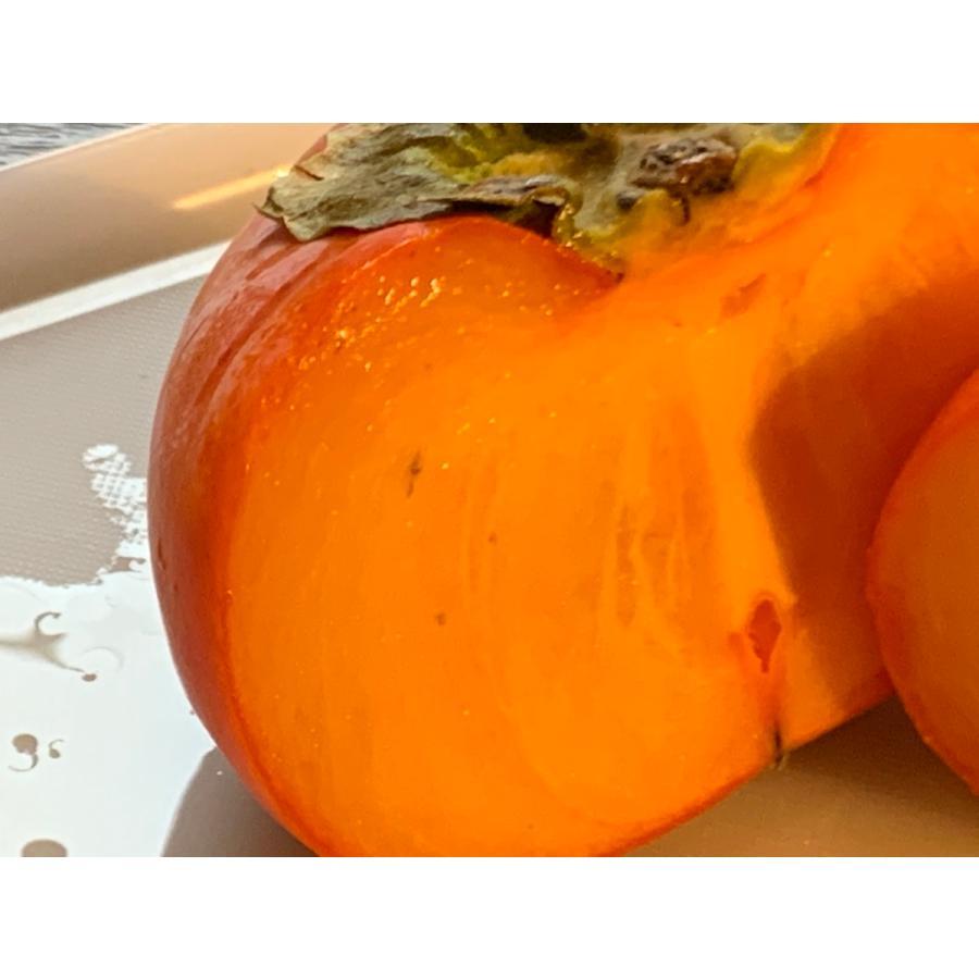 柿 種なしで濃厚な甘さ 新潟県佐渡産 おけさ柿 M 20個入れ(3.75kg詰)|vegetable-fruit-igh|02