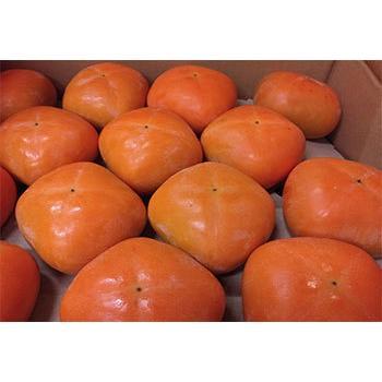 「新潟ウチごはんプレミアム」おすすめ野菜入り 野菜セット 詰め合わせ 8品目 お好みで追加可能|vegetable-fruit-igh|06