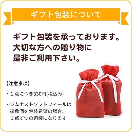 ジムナストソフトフィール 枕 送料無料 まくら 洗える 日本製 高さ調節 首こり 肩こり いびき パイプ|venex|20