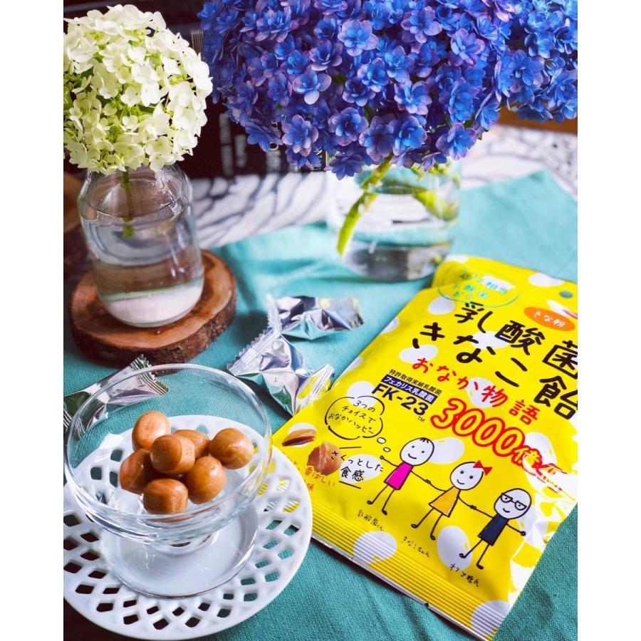 乳酸菌 きなこ飴 【おなか物語】 |verslesreves