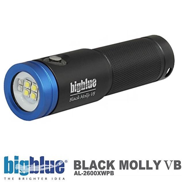 【格安SALEスタート】 BIGBLUE ビッグブルー 水中ライト LED ライト BLACK MOLLY VB ブラックモリー5 BLACK BIGBLUE ダイビング ライト ストロボ ランタン AL-2600XWPB ブルーライト 電池式 2600ルーメン, 焼酎のお店 焼酎:cf446fc6 --- airmodconsu.dominiotemporario.com