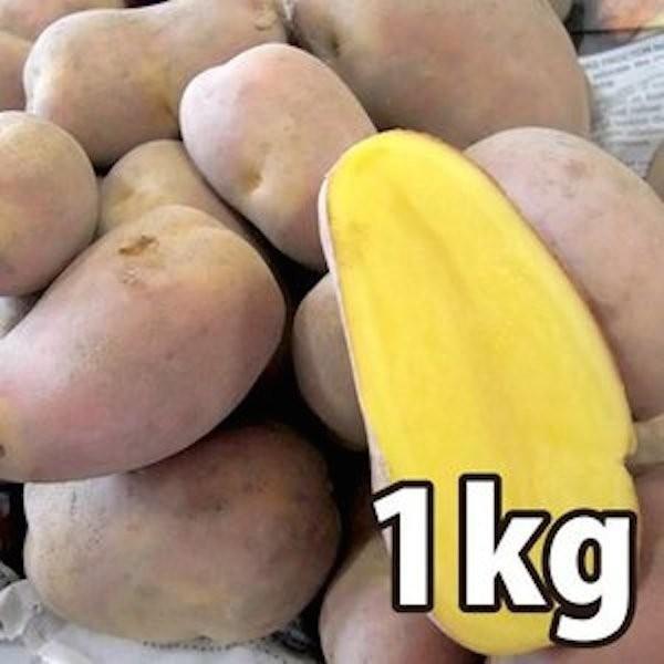 野菜・種/苗[春植えジャガイモ種芋]北海道産 インカのひとみ  じゃがいも種芋・生もの種 量り売り1kg【12月中旬頃発送】|vg-harada
