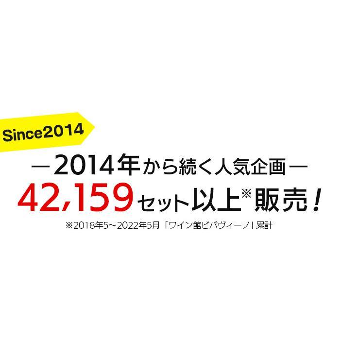 ワイン ワインセット 赤白ワインセット 10本 おまけ付き 金賞受賞 お手頃セット 送料無料 一部除外 お買い得|viva-vino|03