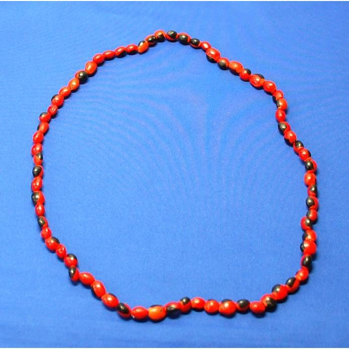 【HUAIRURO NECKLACE】南米ペルーのお守り ワイルーロの実のネックレス1連 長さ約76cm vivas 02