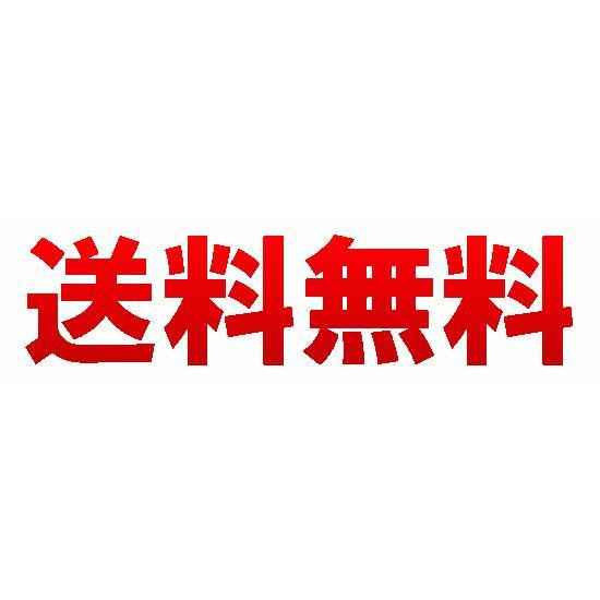 パイナップル豆乳ローションプレミアム 鈴木ハーブ研究所 除毛 脱毛 送料無料|w3k|04