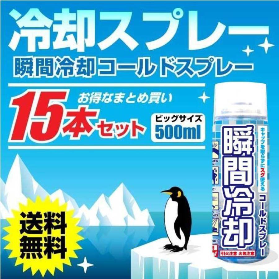 コールドスプレー 品質保証 冷却 熱中症 対策 15本セット NEW売り切れる前に☆ 500ml 徳用