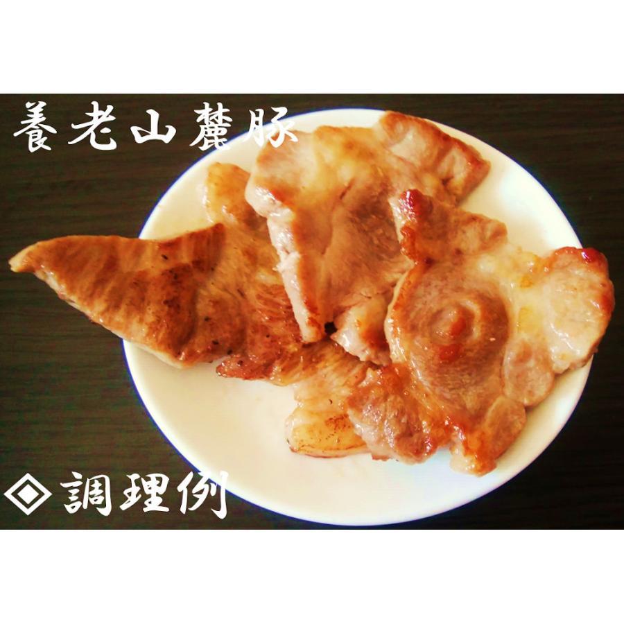 焼肉ファミリーセット【3〜4人前】|wagyu-okada-ya|08