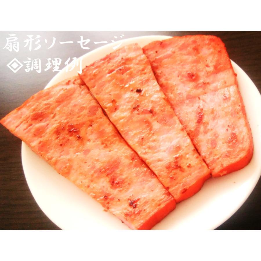 焼肉ファミリーセット【3〜4人前】|wagyu-okada-ya|09