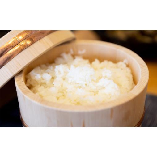 令和2年福井県産つきあかり 白米10kg ポリ袋|wakasa-megumi