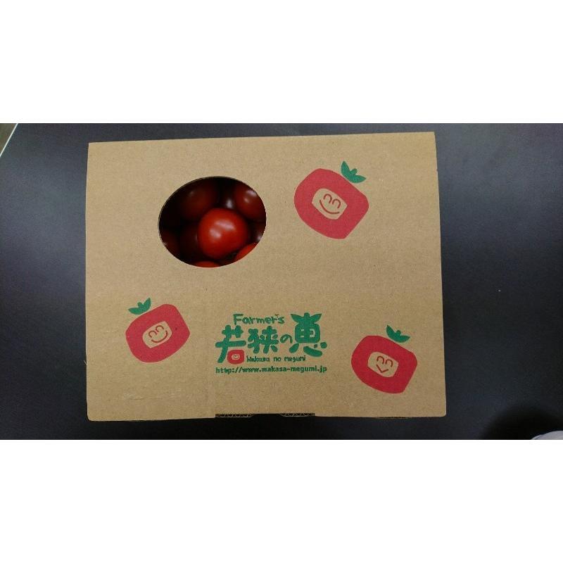お得パック めぐみでぃトマト 1kg×2 箱入り 若狭の恵 wakasa-megumi 02