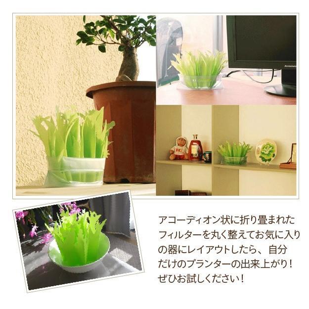 加湿器 ペーパー加湿器 まるで観葉植物 電気不要 気化式加湿器 自然気化式・エコロジー加湿器|wakasugi2012|14
