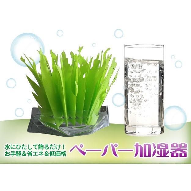加湿器 ペーパー加湿器 まるで観葉植物 電気不要 気化式加湿器 自然気化式・エコロジー加湿器|wakasugi2012|07