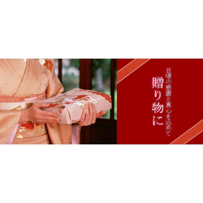 紀州南高梅 天日梅干し 大粒 はちみつ漬け  honey syrup 20粒 ギフトに最適な個包装 塩分約6%|wakayamatokusanhin|05
