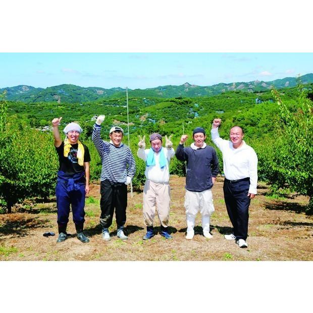 紀州南高梅 実くずれ梅 食べ比べ はちみつ漬け200g×2個 |wakayamatokusanhin|06