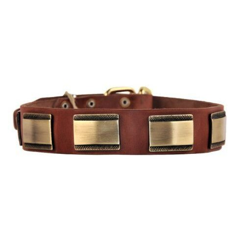 Dean & Tyler Brass Style Dog Collar with Beautiful Plates and Brass Buckle 26 by 1-1/2-Inch 褐色