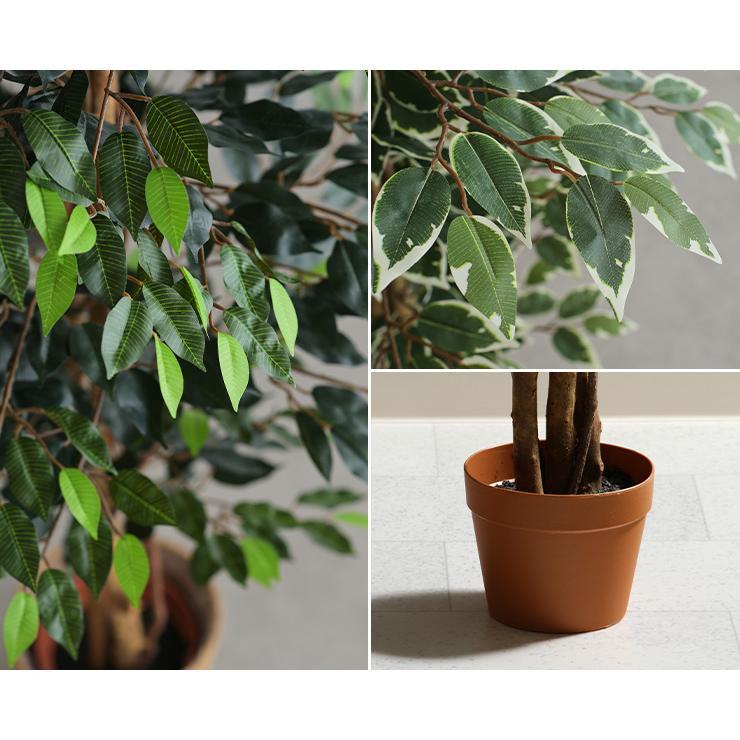 人工観葉植物 フェイクグリーン Ficuse(フィカス) 690 H150cm・H160cm 2種対応 人工植物 観葉植物 おしゃれ フェイク 造花 大型 グリーン インテリア|wakuwaku-land|13