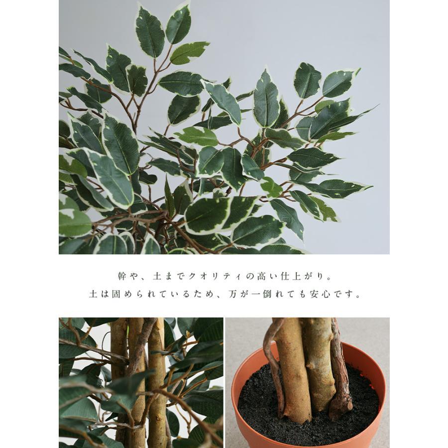 人工観葉植物 フェイクグリーン Ficuse(フィカス) 690 H150cm・H160cm 2種対応 人工植物 観葉植物 おしゃれ フェイク 造花 大型 グリーン インテリア|wakuwaku-land|10