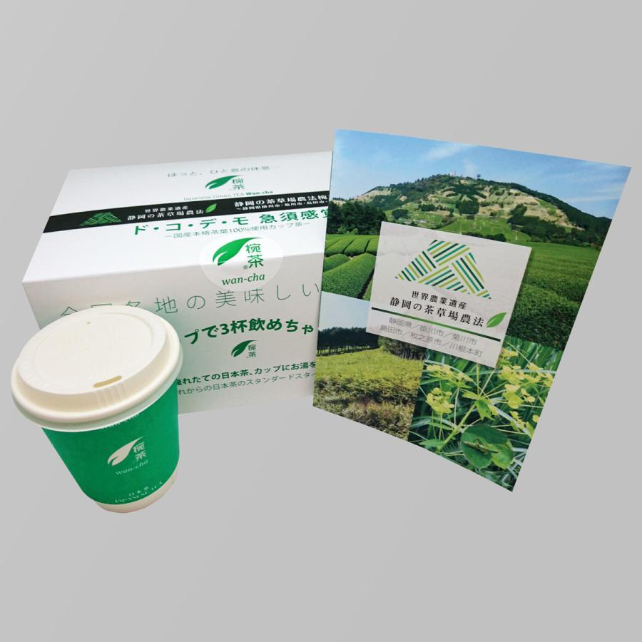 プレイスクラス 世界農業遺産 静岡の茶草場農法椀茶シリーズ 山東茶業組合ECO椀茶 PC70002−静岡県掛川 深蒸し茶−【6個入りボックス】|wancha|03