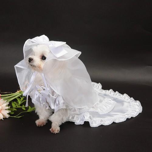 【送料無料】結婚式や記念日に愛犬のためのベール付きウェディングドレス☆|wanpla|02