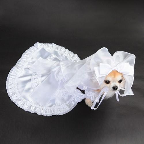 【送料無料】結婚式や記念日に愛犬のためのベール付きウェディングドレス☆|wanpla|03