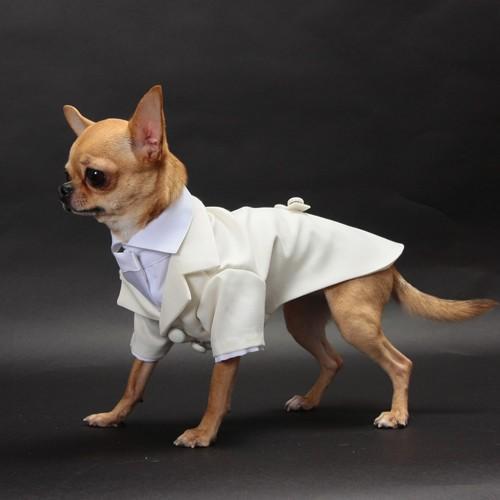細かいサイズにも対応 愛犬のためのタキシードスーツ☆ 結婚式や記念日に【送料無料】 wanpla 03