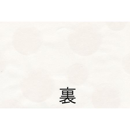 障子紙 新感覚 2154 障子 張り替え 張替え モダン おしゃれ|wasien|02