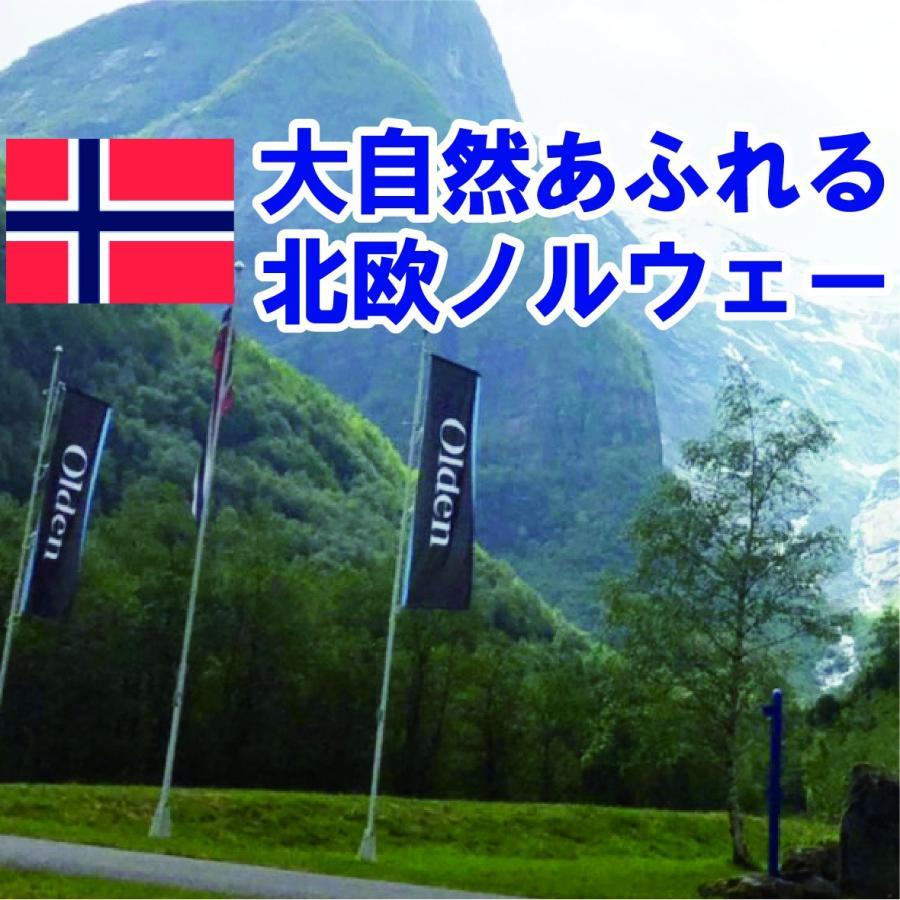 高級ミネラルウォーター・超軟水!北欧ノルウェーのミネラルウォーター オルデン 5リットル×4個|water-air|06