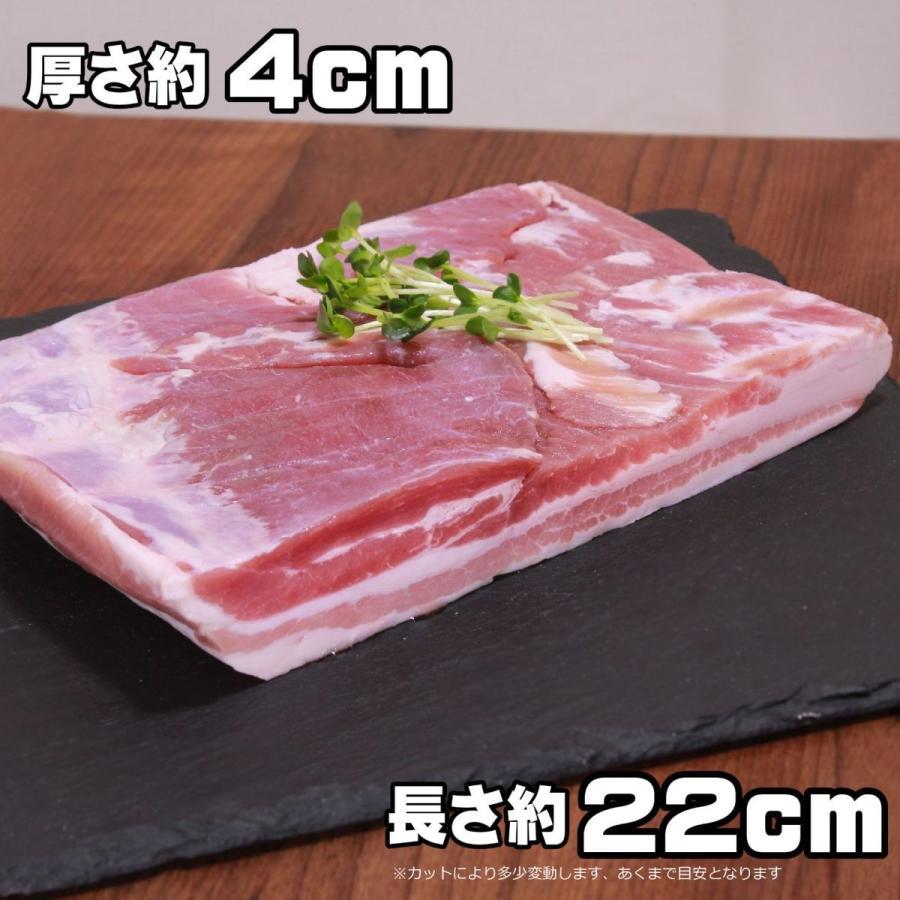 豚バラ ブロック 1kg 角煮やサムギョプサルなどに -SKU202 wholemeat 06