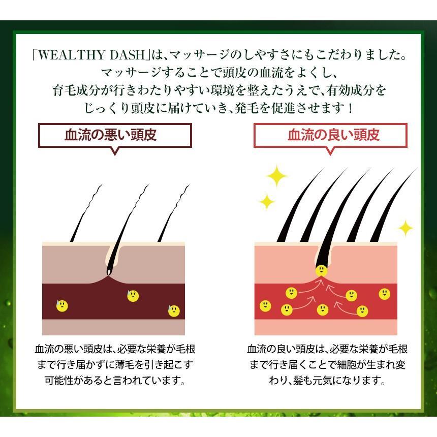 育毛剤 増毛 液体 メンズ レディース 男性用 女性用 医薬部外品 お試し WEALTHY DASH ウェルシーダッシュ 120ml|wide02|12