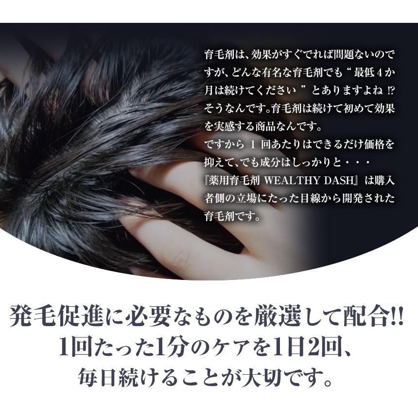 育毛剤 増毛 液体 メンズ レディース 男性用 女性用 医薬部外品 お試し WEALTHY DASH ウェルシーダッシュ 120ml|wide02|04