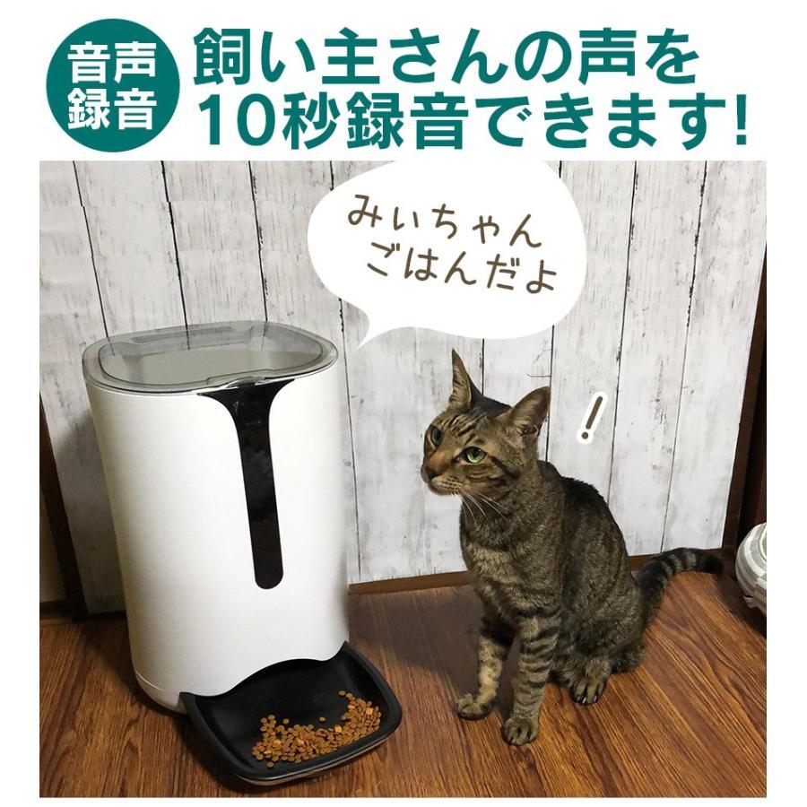 自動餌やり機 猫 猫用 犬 犬用 猫餌 犬餌 自動給餌器 エサ 自動餌やり器 多頭飼い 音が出る 声が出る 音声 ボイスレコーダー付き 音声録音 大容量 6L wide02 03