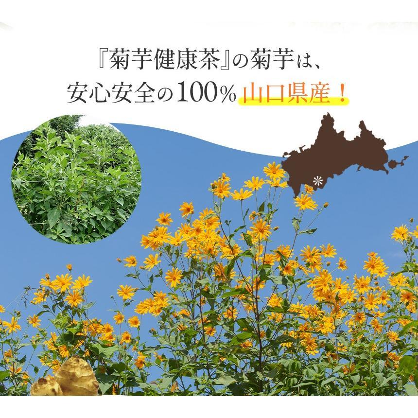 菊芋茶 健康茶 キクイモ茶 国産 日本製 セット 1袋 30g 15包 15パック ティーバッグ 菊芋100% 山口県産 菊芋健康茶 焙煎 焙煎茶 イヌリン ノンカフェイン|wide02|12