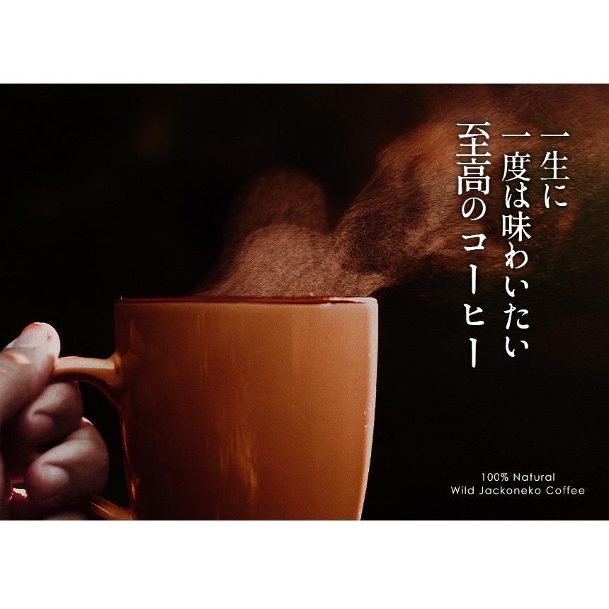 コーヒー コーヒー豆 10g コピルアク コピルアック ジャコウネコ 1袋 野生 インドネシア産 冬 ギフト お歳暮 クリスマスプレゼント|wide02|02