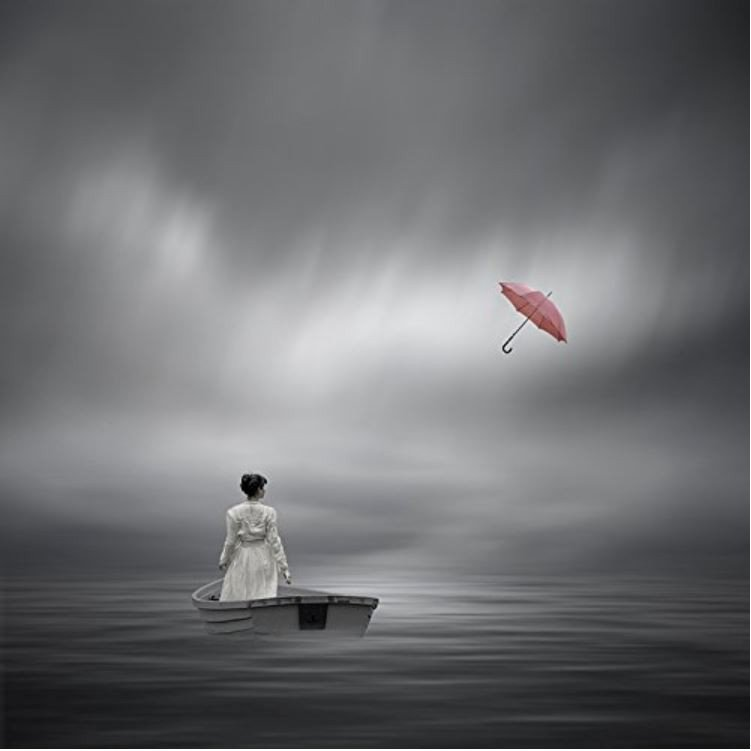 ウォールアート Philip McKay / And is Gone (15 x 15 inches) [正規輸入品]