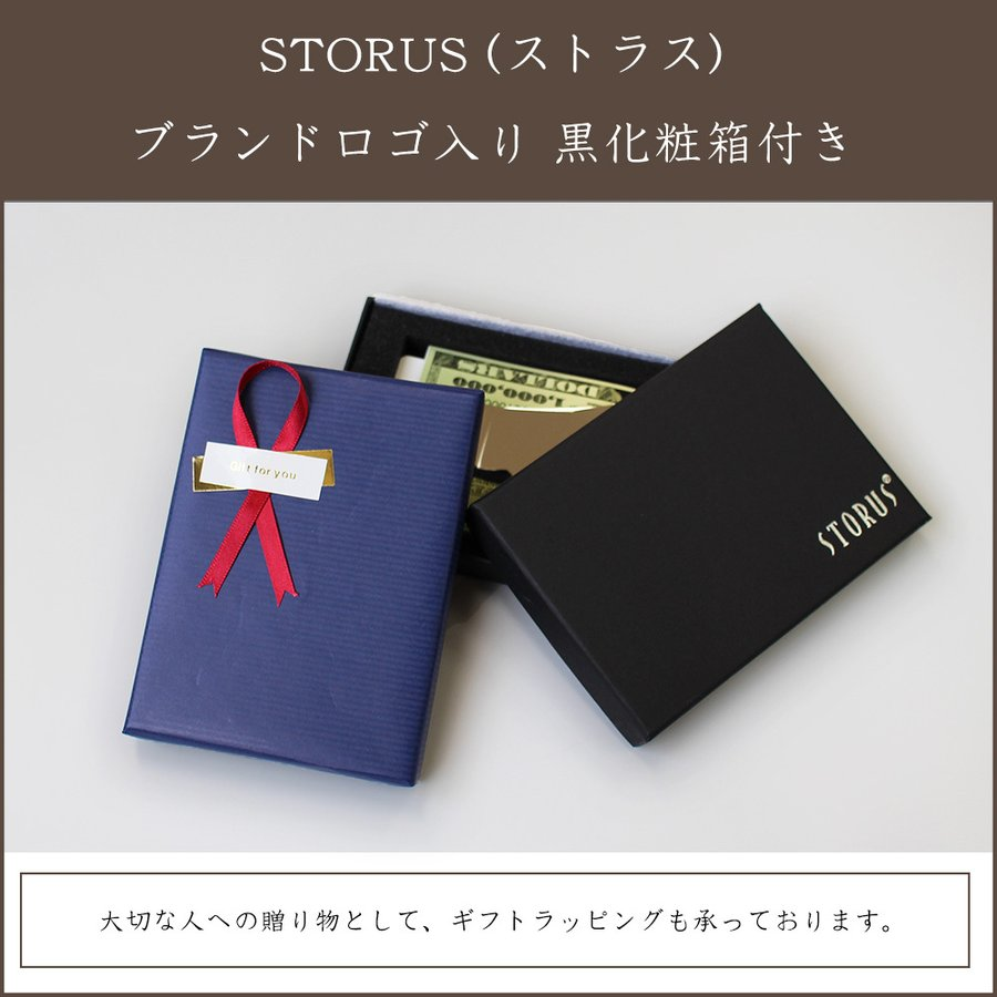 STORUS(ストラス) スマートマネークリップ  シルバー|windasia|14