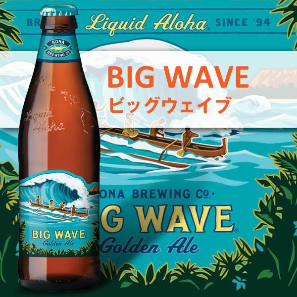 (送料無料)ハワイアンビール12本セット(C) ハワイNo1クラフトビール コナビール限定品含む4種飲み比べ ゴールド クリフ IPA入り|winecellarescargot|04