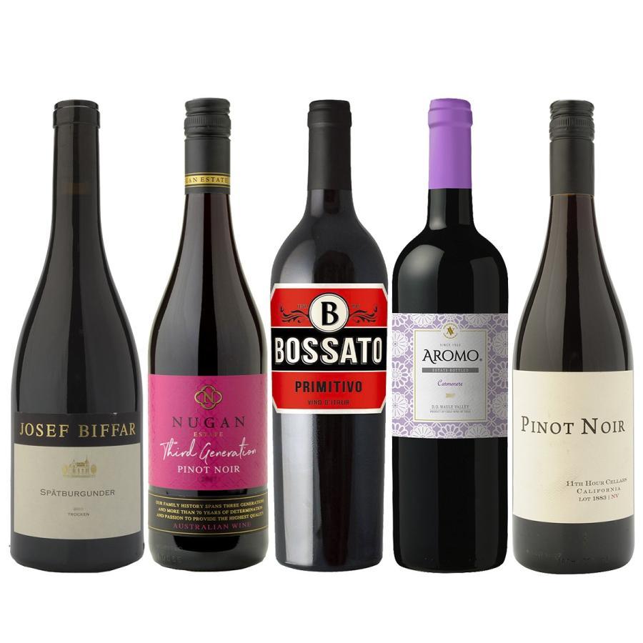 【送料無料】リケジョがドイツワイン造りに魅せられて醸造家に!Fumikoのワインが入ったエレガントな赤ワイン5本セット|winenet