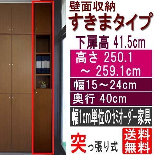 扉付壁面すきま収納 整理棚 整理棚 高さ250.1〜259.1cm幅15〜24cm奥行40cm厚棚板(棚板厚み2.5cm)