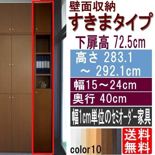 隙間つっぱり壁面収納 隙間つっぱり壁面収納 文庫本棚 高さ283.1〜292.1cm幅15〜24cm奥行40cm 下扉高さ72.5cm