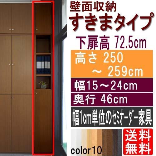 隙間つっぱり壁面収納 文庫本棚 高さ250〜259cm幅15〜24cm奥行46cm 高さ250〜259cm幅15〜24cm奥行46cm 下扉高さ72.5cm