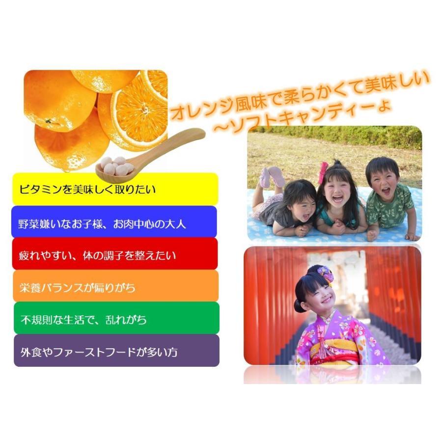 [栄養機能食品 (ビタミンA・ビタミンB12・葉酸・ビタミンC・ビタミンD含有食品)]かわいい肝油プラス winnowstore 04