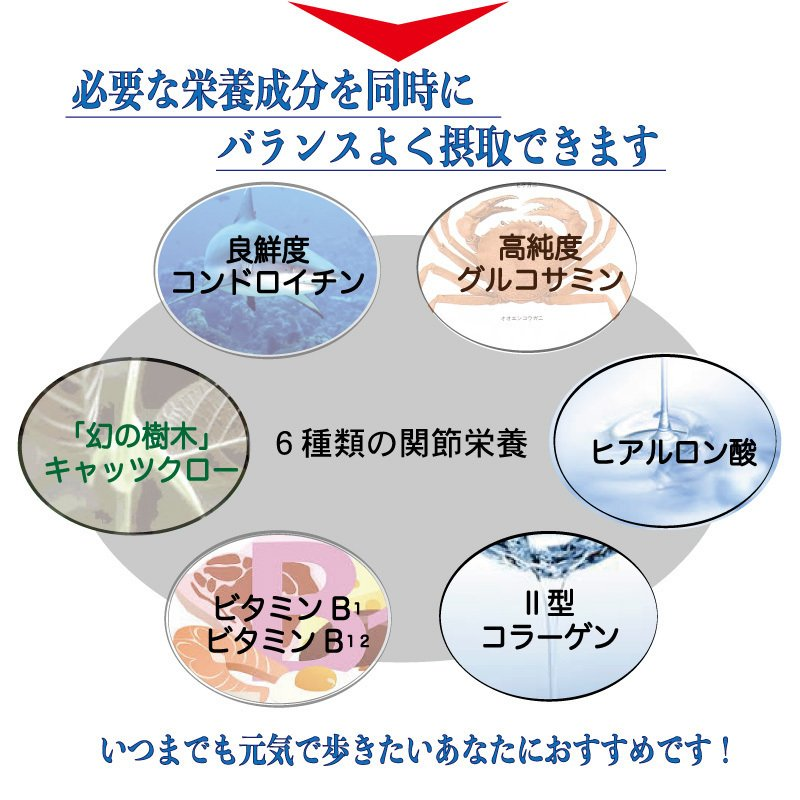 グルコサミン&コンドロイチン+キャッツクロー サメ軟骨成分配合6つのバランス栄養 AMAZONで売れています!!!! winnowstore 09