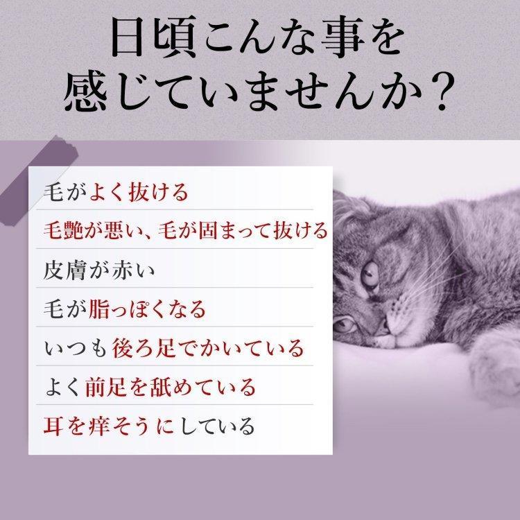 【ゆうパケット送料無料】猫の皮膚病・アトピー性皮膚炎サプリ PS-B1(乳酸菌生産物質)・LPS など8種類の成分配合 (猫用・毎日美肌 1袋60粒入)|with-pety|02
