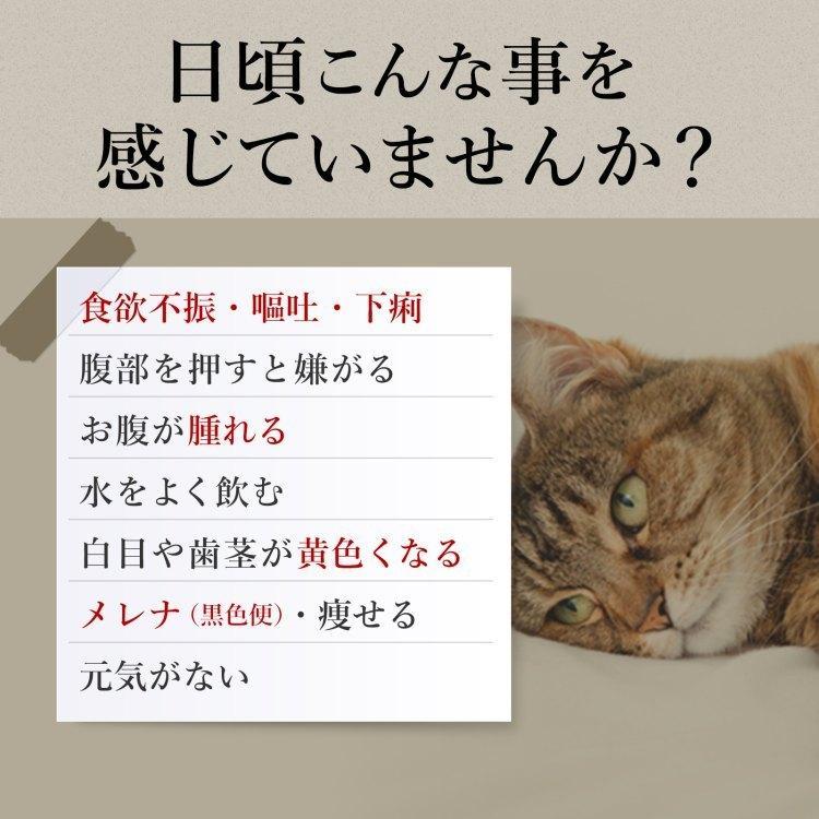 【ゆうパケット送料無料】猫の肝臓病・肝炎サプリ 肝臓エキス・プラセンタ・SAMeなど8種類の成分配合 (猫用・毎日良肝 1袋60粒入り)|with-pety|02