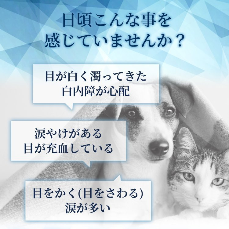 (目の健康維持)【6成分配合】【犬猫兼用サプリ/粉末ミルク味】「毎日愛眼 ブルーベリー&ルテイン」(1袋60杯入り/付属スプーン付) with-pety 02