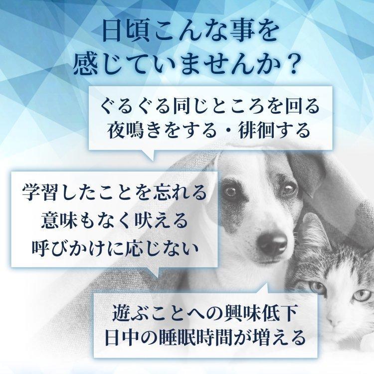 (老犬 老猫の健康維持)【7成分配合】【犬猫兼用サプリ/粉末ミルク味】「毎日一緒 DHA&EPA」(1袋60杯入り/付属スプーン付)|with-pety|02
