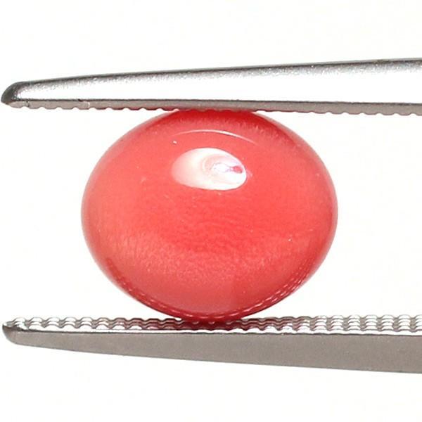 コンクパールルース2.197ct約7.7mm×6.5mm×5.7mmオレンジ色を帯びたピンク色火炎模様 ソーティング/鑑別機関が発行する簡易鑑別付 天然真珠|wizem