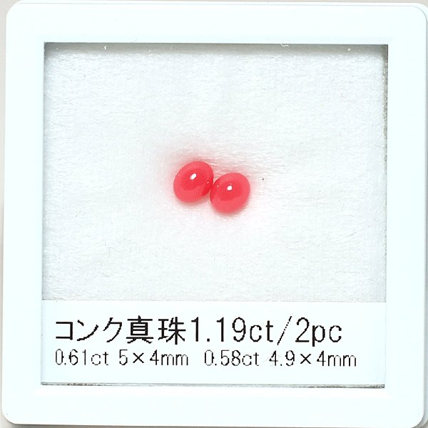 コンクパールペアルース2pcで1.19ct/0.58ct&0.61ct色良い 希少な天然真珠 wizem 03