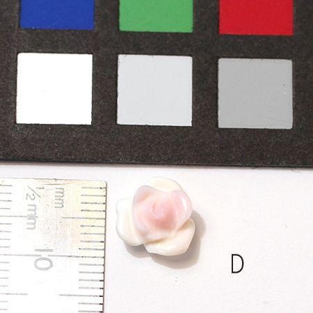 コンクシェルのバラ 直径約10mm 材料 バラ売り1個/配送方法370円選べる対応商品|wizem|05